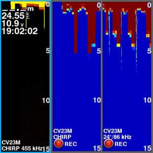 Garmin echoMAP CHIRP(ガーミン エコマップ チャープ) 54CV!魚探比較!