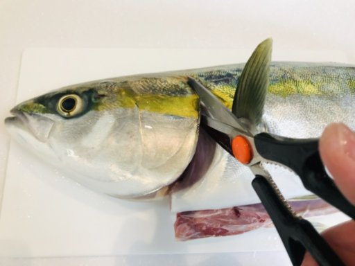 釣った魚を熟成刺身にする方法!手順を画像付きで解説♪